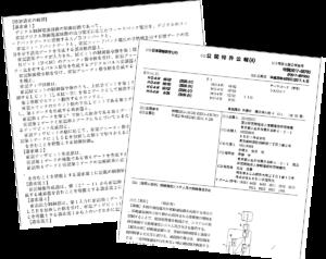 効果う特許公報サンプル